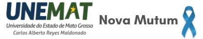 Unemat Logo